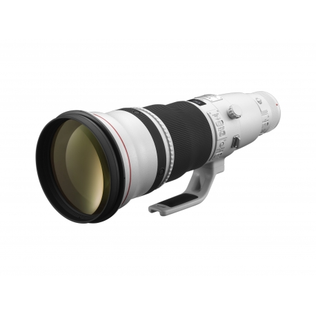 Canon EF 600 mm f/4.0 L IS II USM